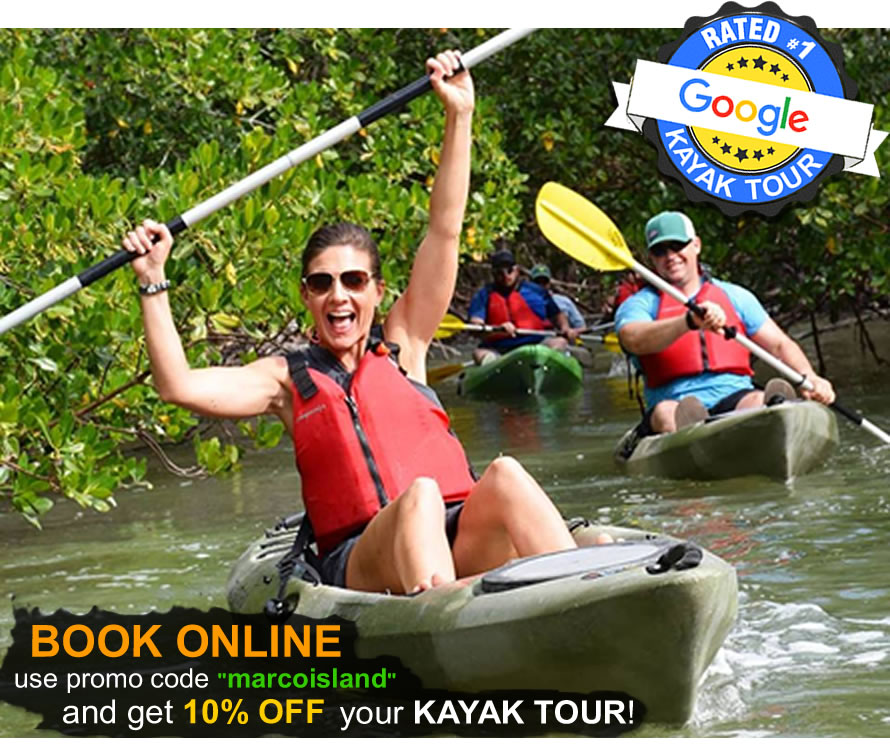 Book a Kayak Marco Island Tour